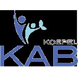 kab_logo_top-5047bf91f6344eb323fd9fd1d54ee79d8d5e501bd94e9bdaadb7ffd7dfc9bb25 (1)